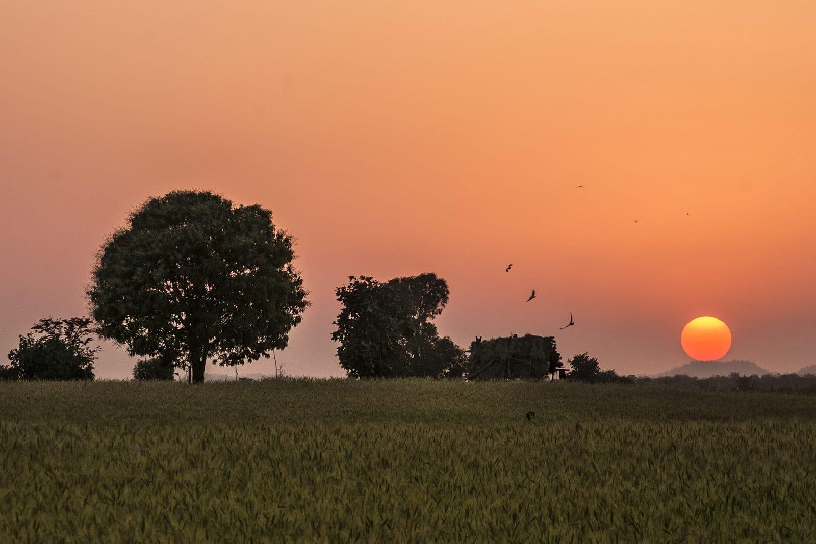 satpura sunset