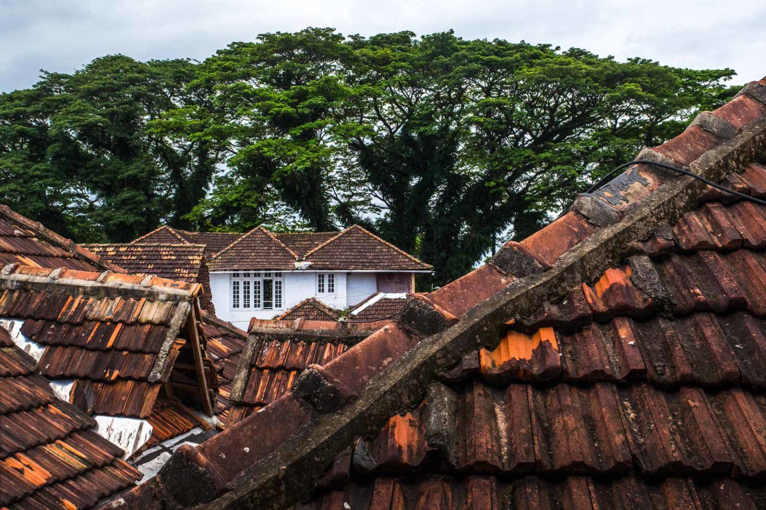 Dutch Mansions, Fort Kochi old houses