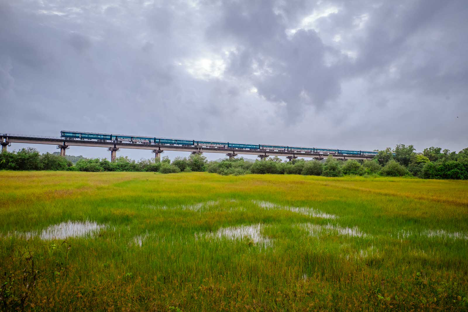 train runs through Divar Island