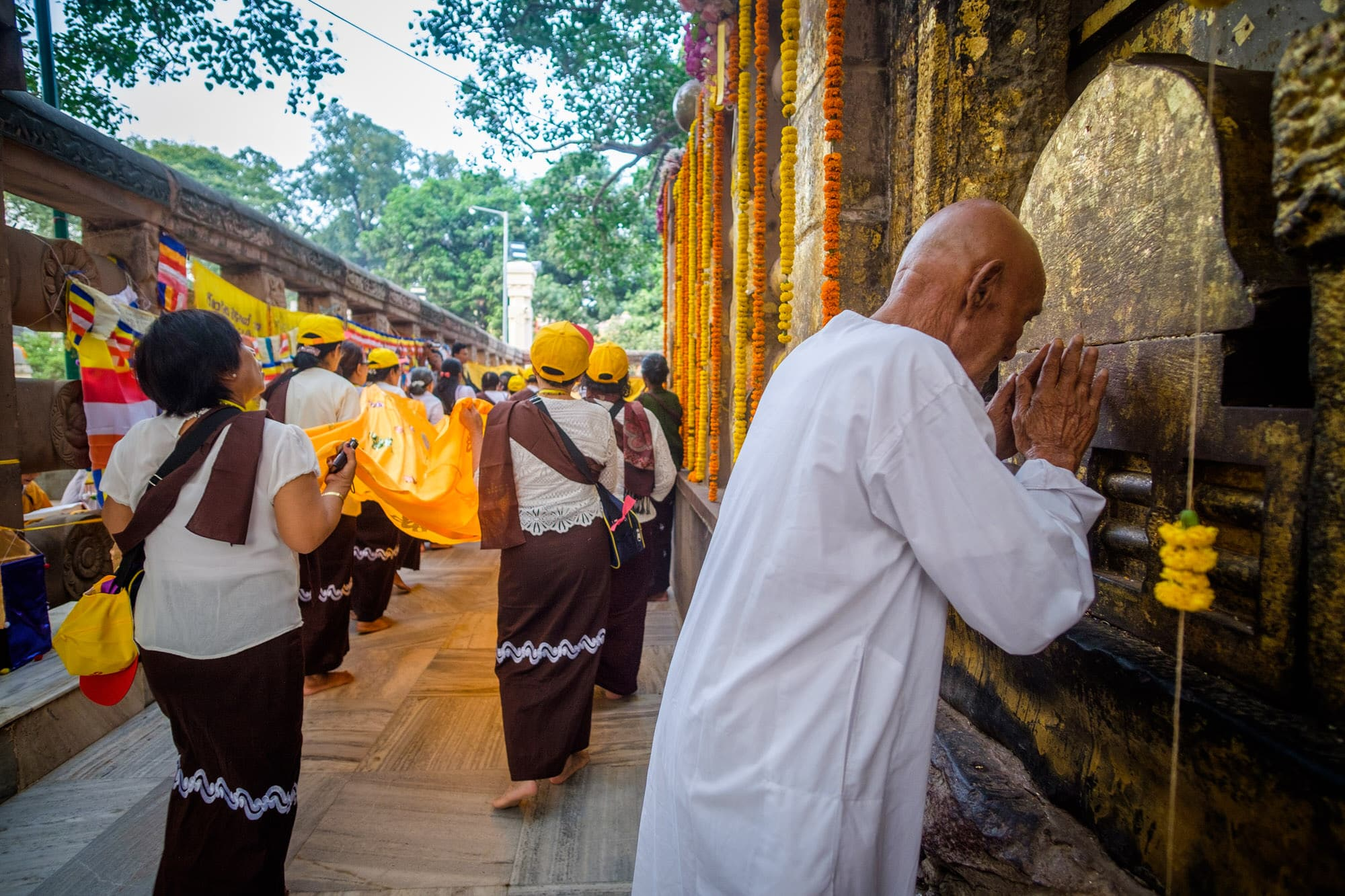 A pilgrim prays before the Bodhi tree in the Mahabodhi Temple, Bodhgaya