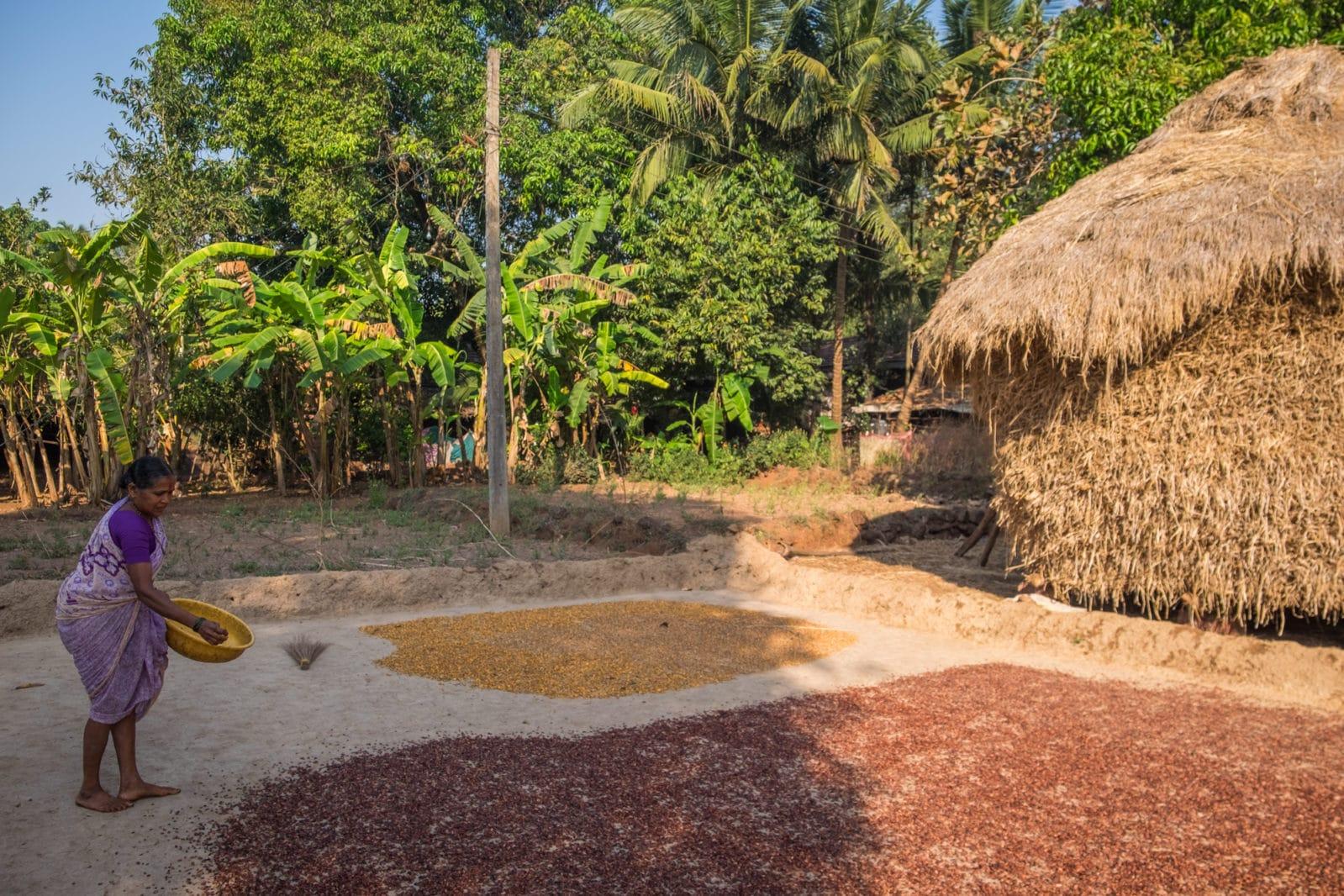 Naringre Village